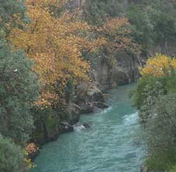 Koprulu canyon national park